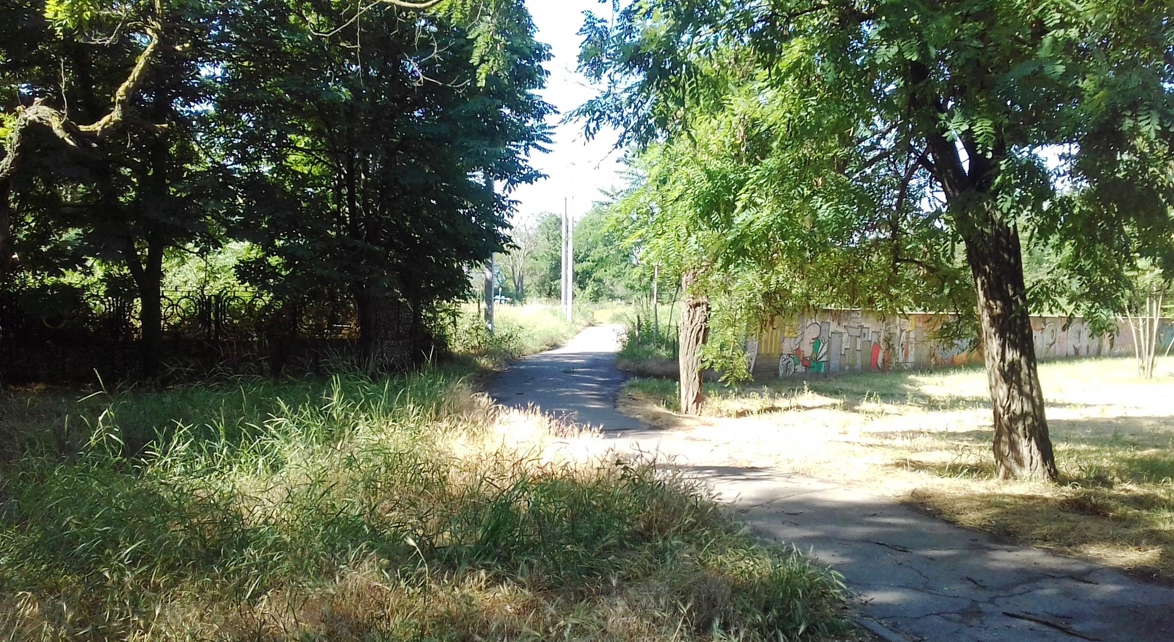 Херсонское мемориальное кладбище - добыча леса, металла и антиквариата (фото)