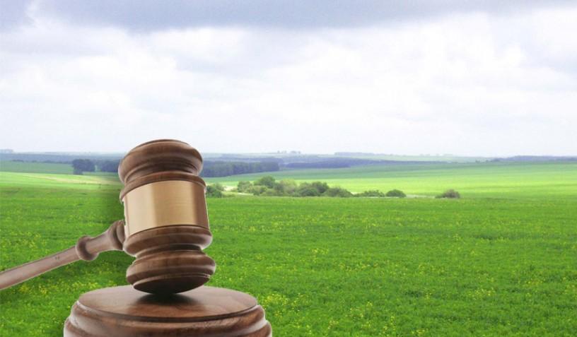 Земельні торги відбудуться на Херсонщині