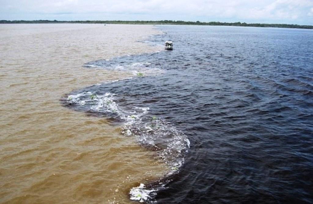 Днепр под Херсоном наполняется морской водой