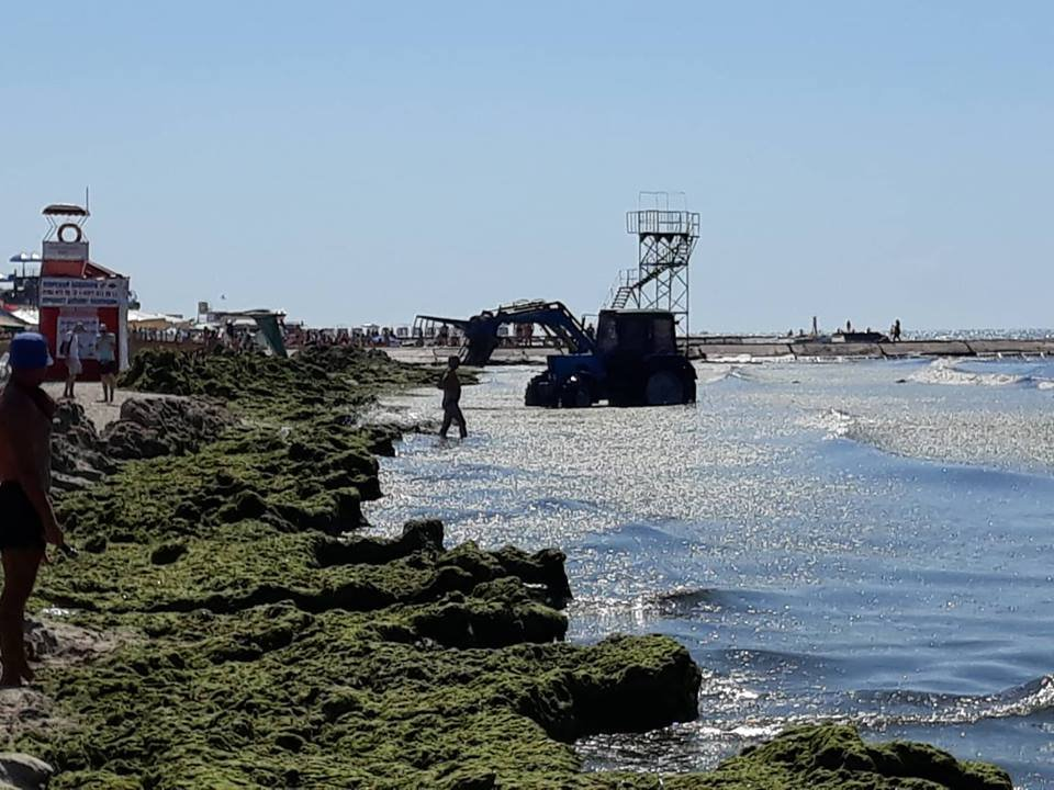 В Железном Порту отдыхающие купаются с препятствиями