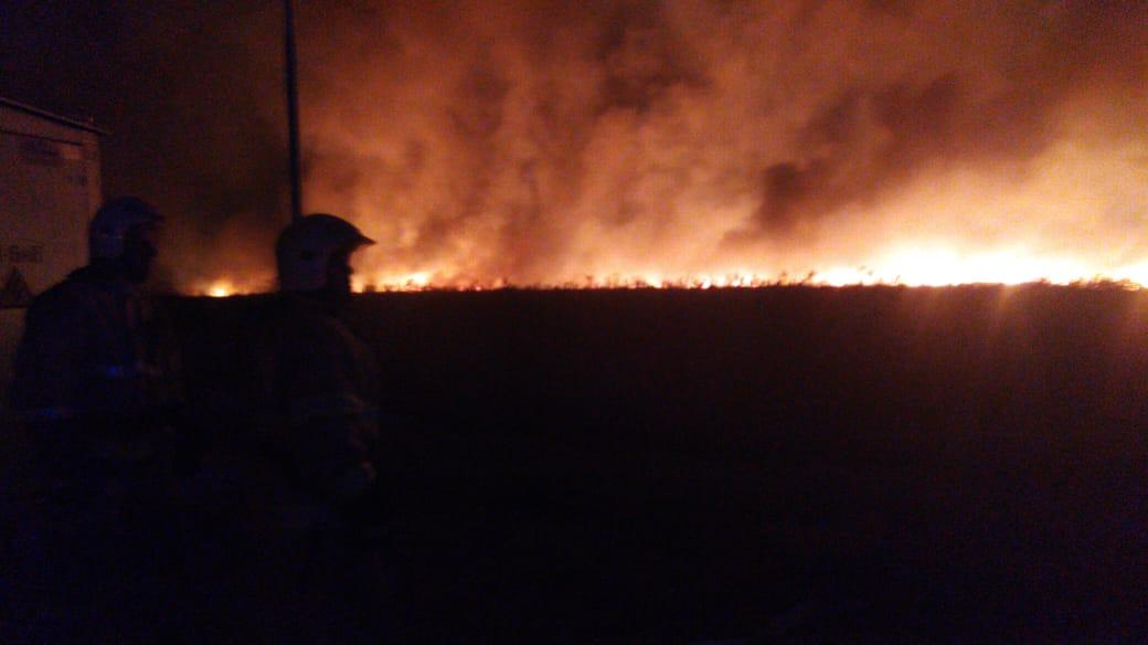 Пожар в херсонских плавнях продолжается - теперь в районе Антоновского моста